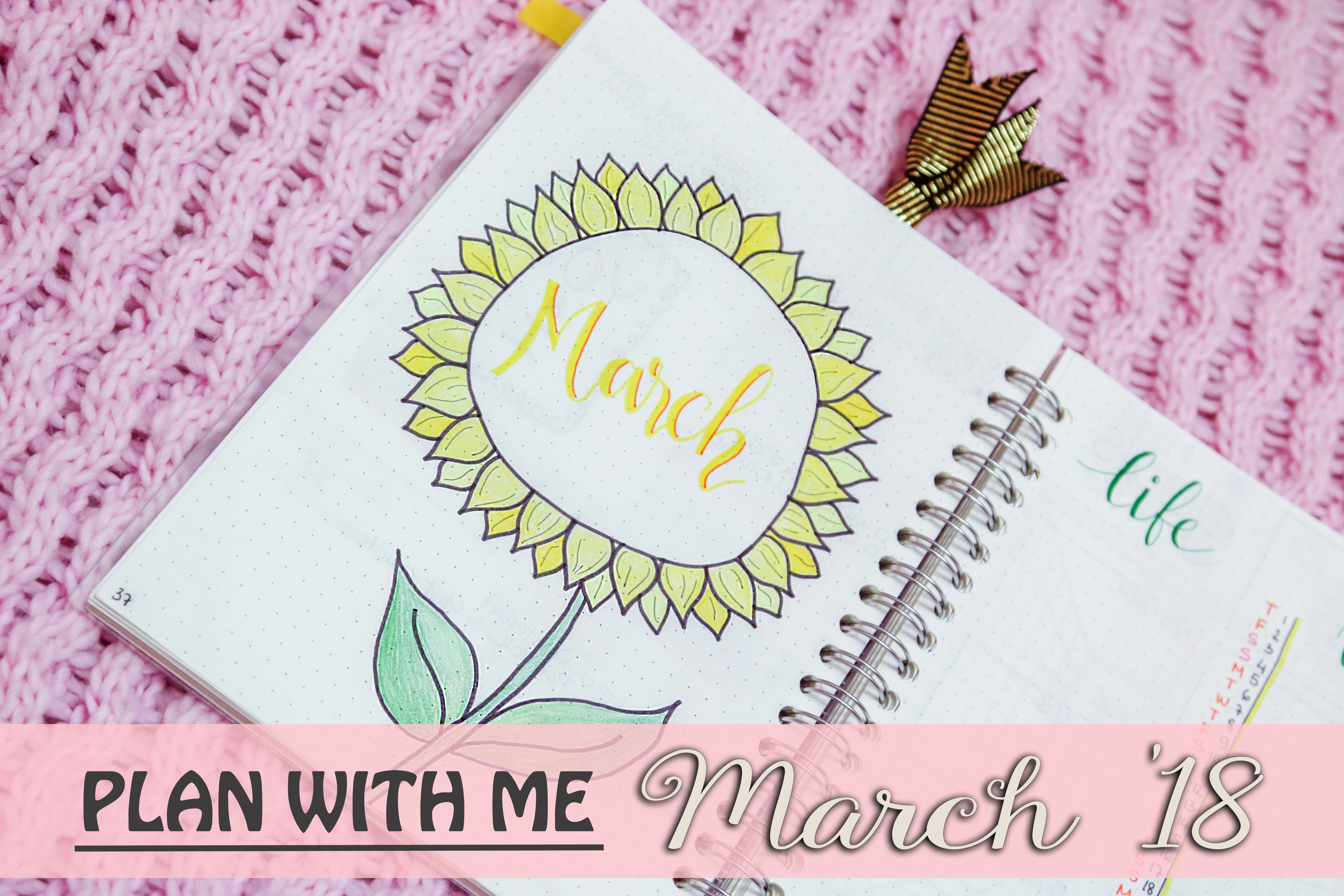 plan with me bullet journal march 2018
